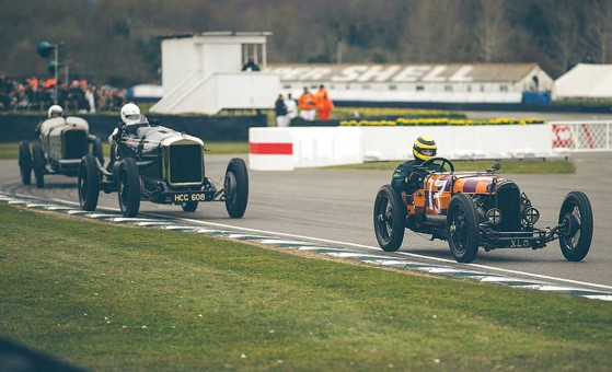 GN-Delage-Sunbeam- Goodwood Members Meeting