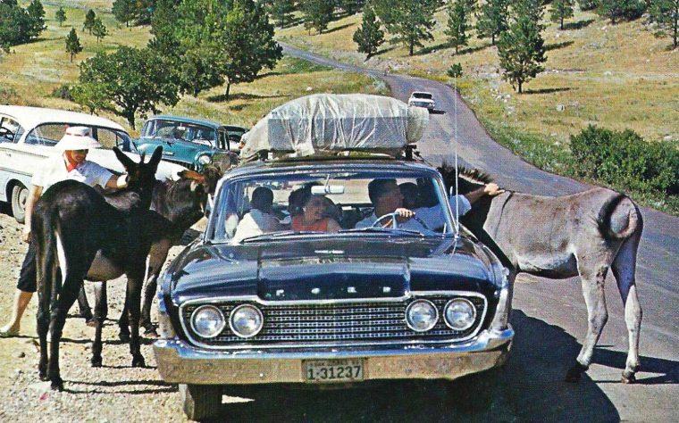 Early-1960s Cars-Parking Lot Scene
