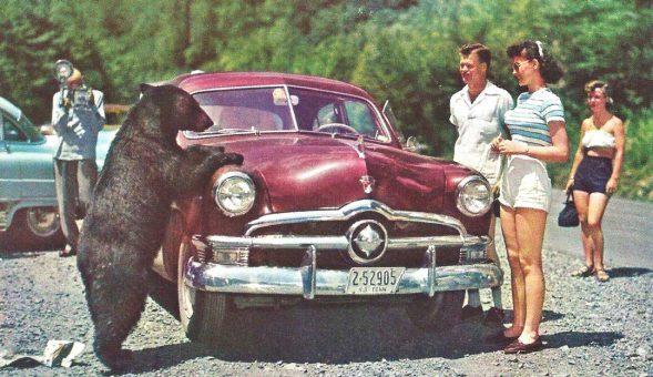Early-Fifties Ford Sedan